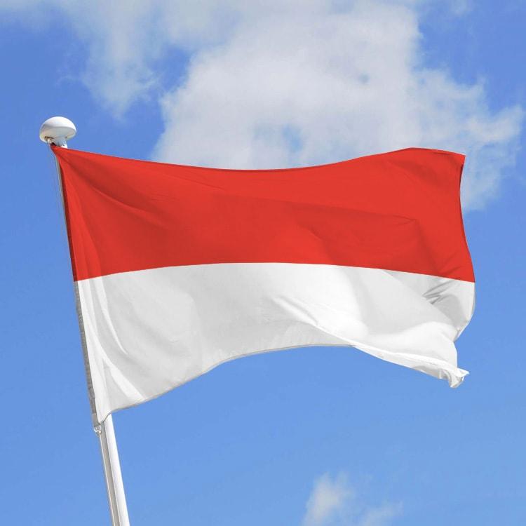 Censure Internet Indonésie