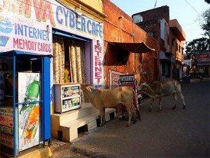 Un VPN pour l'Inde afin de protéger ses données personnelles