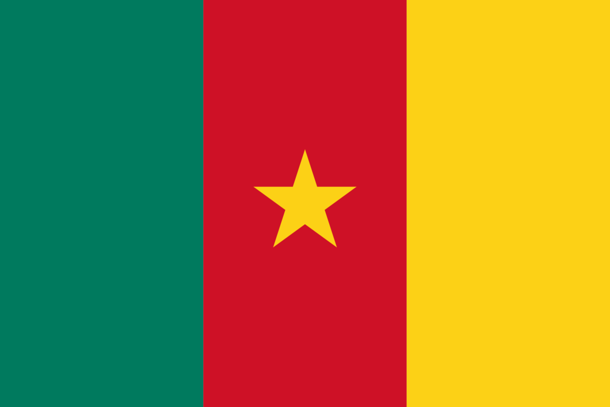 Les meilleurs VPN pour le Cameroun