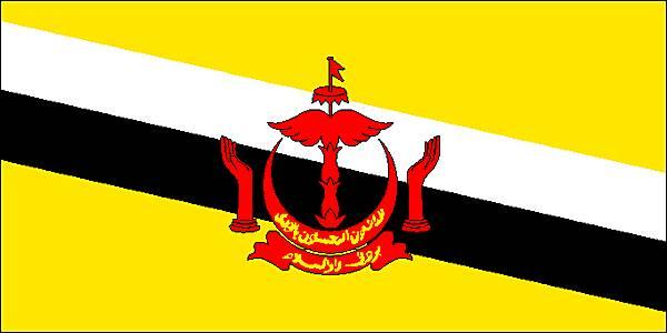 Les meilleurs VPN pour Brunei